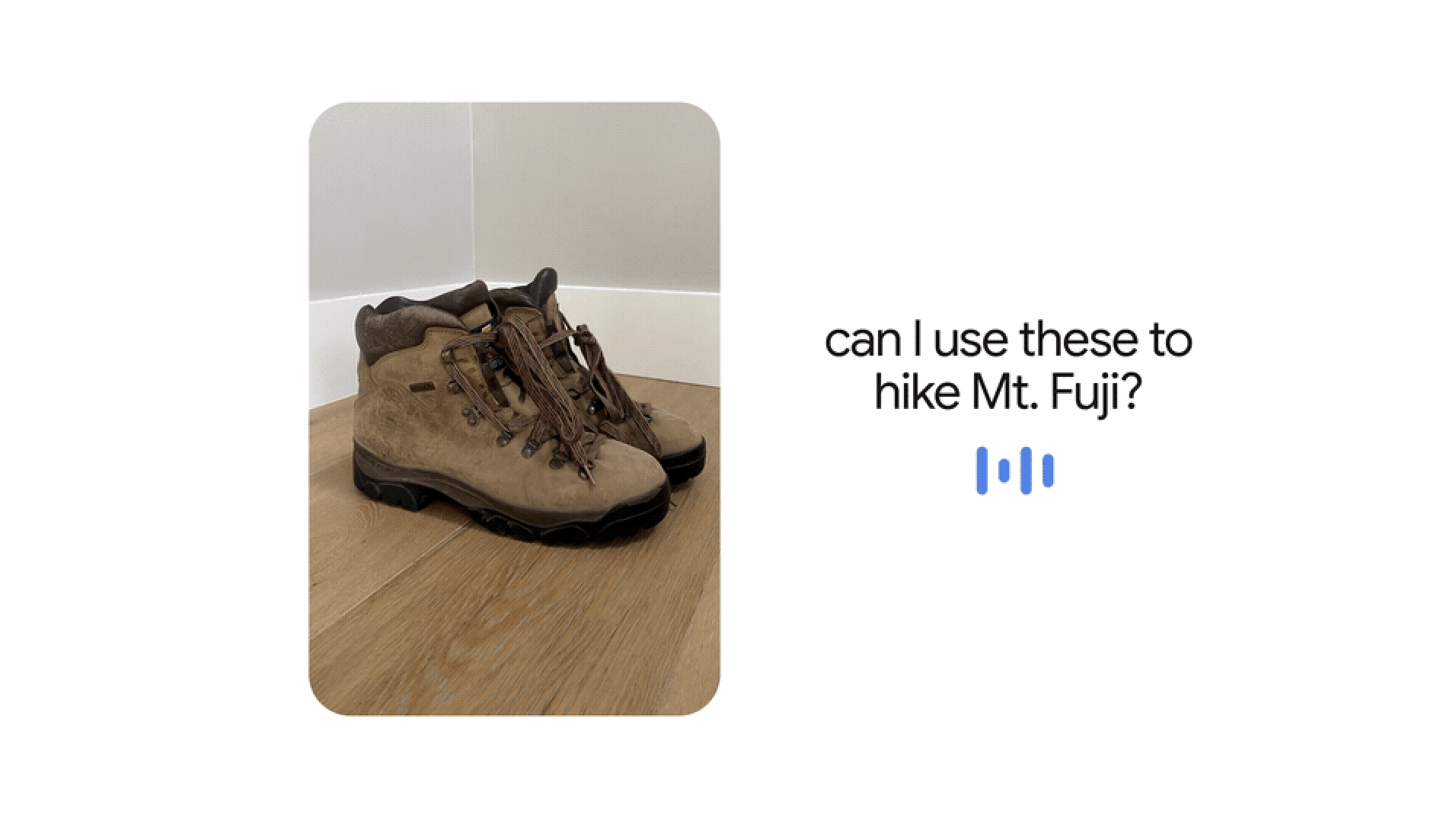 can I use these to hike Mt. Fuji?